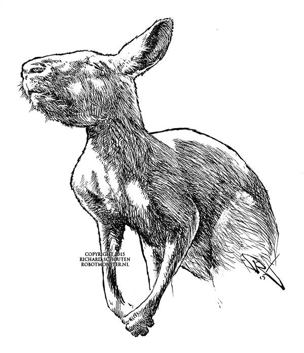 kangaroo-ink